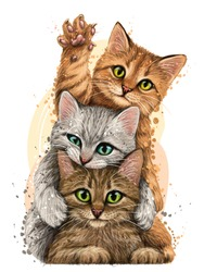 Cats. Wall sticker. Color, graphic portrait of three cute kittens on a white background in watercolor style. Digital Vector Graphics.  Individual layers