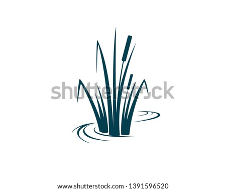 cattail, a wetland plants in a simple line with  Stockfoto ©