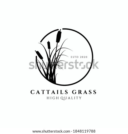 cattail grass logo vector illustration design, circle emblem , elegant decoration logo , monoline design Stockfoto ©