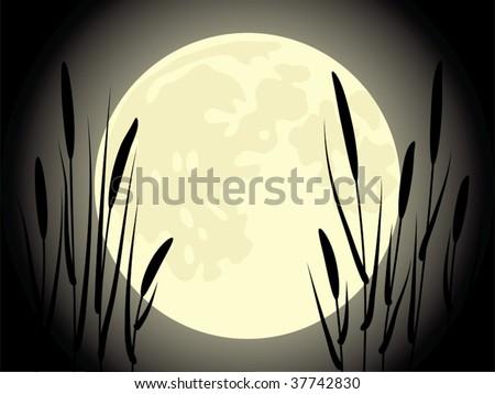 Cattail under the moon. Beautiful vector illustration.