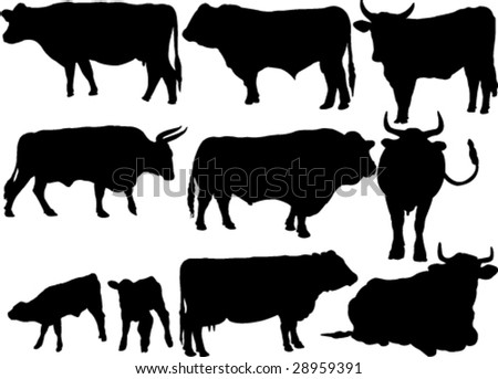 cattle collection silhouettes