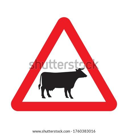 cattle crossing warning road