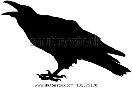 cawing raven vector silhouette