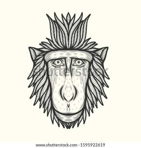 celebes monkey in line art