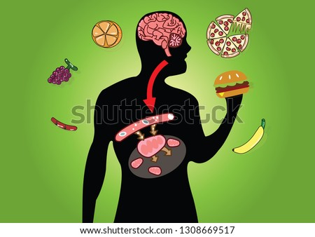 Cellular respiration in mitochondria is a set of metabolic reactions for take place in the cells of organisms to convert biochemical energy from food and other nutrients. Mitochondrial vector