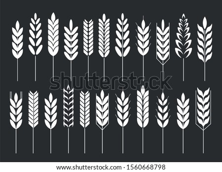 Cereal grain spikes icon shape set. Agriculture food logo symbol. Vector illustration image. Isolated on black background. Oat, whey, barley, rye.