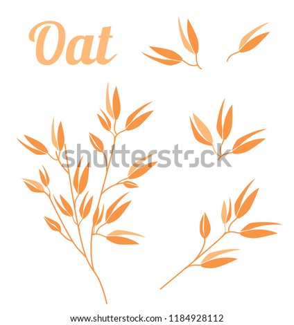 Cereal plants, agriculture industry organic crop products for oat groats flakes, oatmeal packaging design. Vector icons isolated on white background.