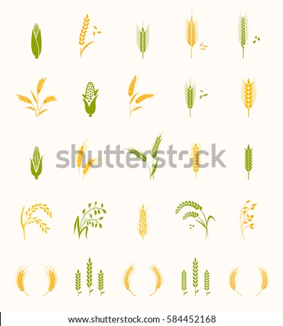 cereals icon set with rice