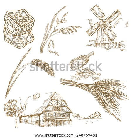 Cereals set. Hand drawn illustration windmill, wheat, farm house in vintage style