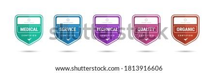 Certified badge logo design for company training badge certificates to determine based on criteria. Set bundle certify colorful vector illustration. Foto stock ©