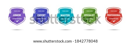 Certified badge logo design for company training badge. Certificates to determine based on criteria. Standard verified colorful modern vector illustration. Foto stock ©