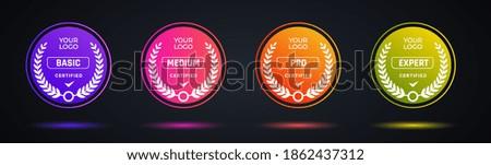 Certified badge logo design for company training badge. Certificates to determine based on criteria. Set bundle certify colorful modern vector illustration. Foto stock ©