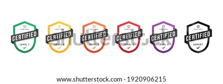 Certified logo badge. Criteria level digital certificate with shield logo line. vector illustration icon secure template.