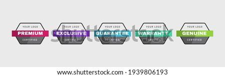 Certified logo badge design template. Set of company training badge certificates to determine based on criteria. Vector illustration certification logo design.