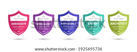 Certified logo badge with shield shape vector. Digital certificates of criteria levels. Vector security icon template.