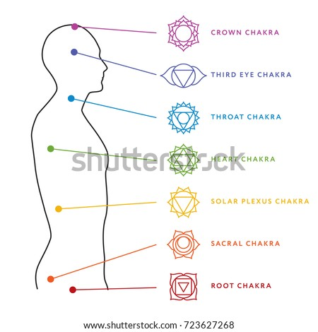 stock vector chakra system of human body chart seven chakra symbols location information of each chakra 723627268 shutterstock puzzlepix
