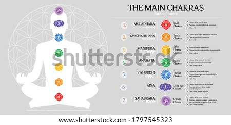 Chakras Principal 7 infographic design vector elements simple information about energy centers