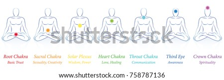 chakras   seven colored main