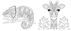 Chameleon and giraffe set for coloring book page and other printed product. Vector illustration