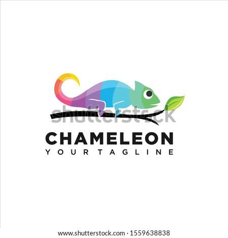 chameleon colorful design