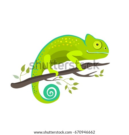 chameleon icon cartoon