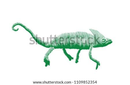chameleon isolated vector