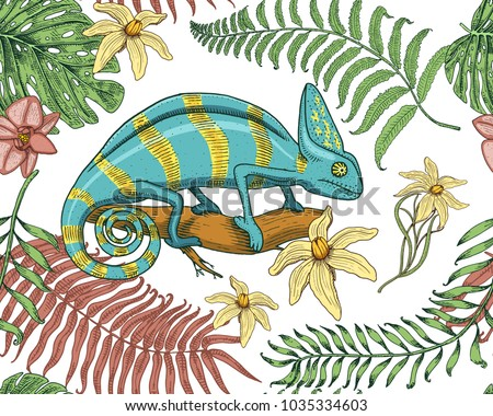 stock-vector-chameleon-lizard-tropical-flowers-seamless-pattern-american-green-reptile-or-snake-herbivorous