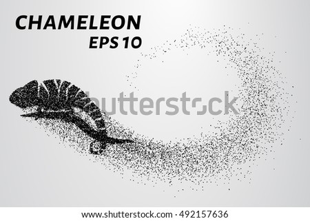 chameleon particle the