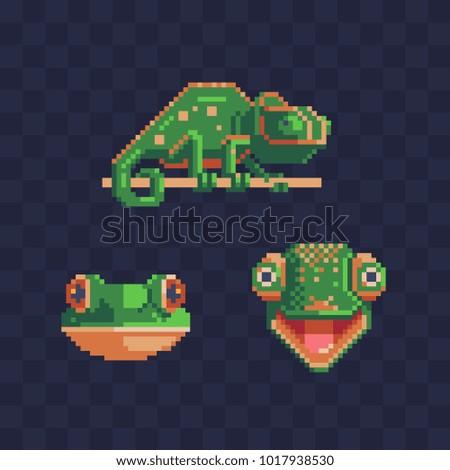 chameleon pixel art style icon