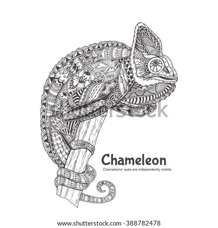 chameleon with doodle pattern