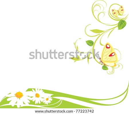 Chamomiles and butterflies. Spring composition. Vector