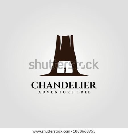 chandelier tree tunnel on