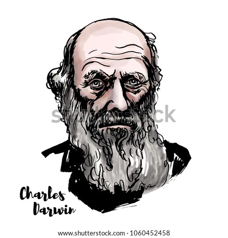 charles darwin watercolor