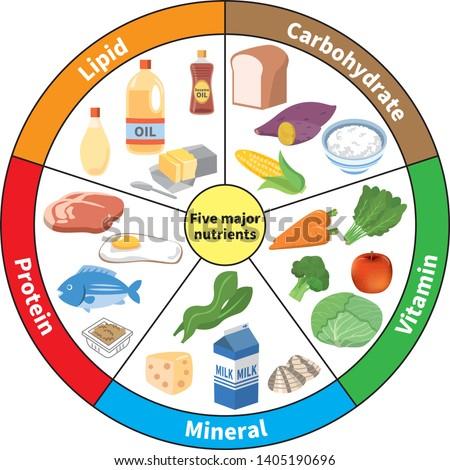 Chart of five major nutrients Сток-фото ©