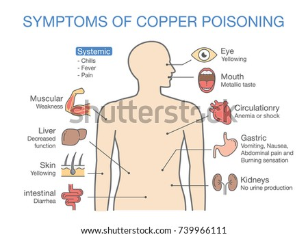 chart of the main symptoms of