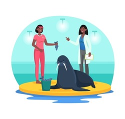 Checking health of navy seal in dolphinarium. Employee feeds animal with fish, and veterinarian conducts examination. Smart wild animal. Cartoon flat vector illustration isolated on white background