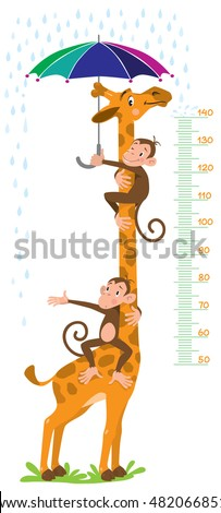 Cheerful funny giraffe and two monkeys with umbrella under the rain. Height meter or meterwall or wall sticker. Childrens vector illustration with scale from 50 to 140 centimeter.