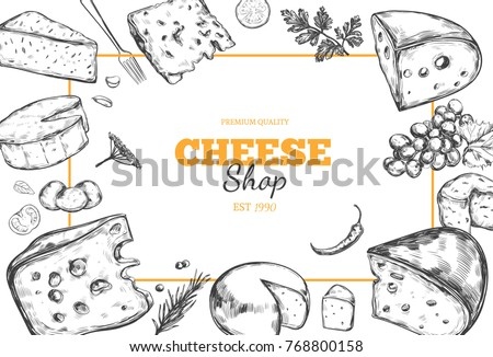 Cheese collection. Vector hand drawn background with different types of cheese.