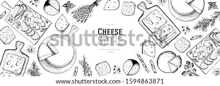 Cheese hand drawn illustration, top view frame. Food design template. Package pattern. Vector illustration with a collection of cheese. Engraved style image. Dairy farm products cheese.