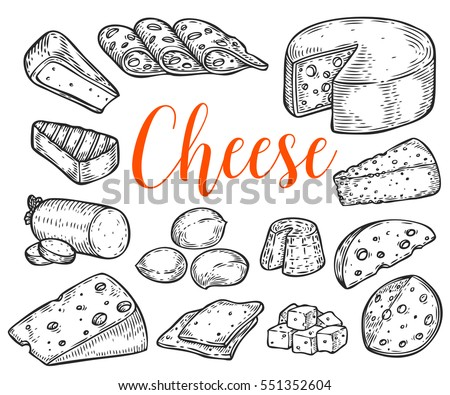 Cheese organic milk butter fresh food vector hand drawn illustration set, menu label, banner poster identity, branding. Stylish design with sketch illustration of Cheese variations cuisine sketch.