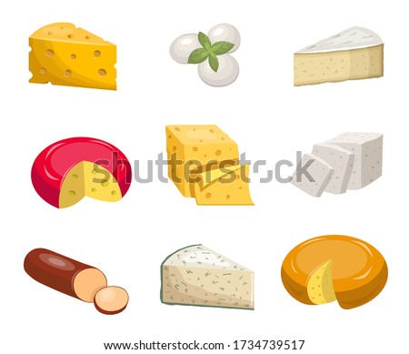 Cheese set. Yellow piece cheddar oval white mozzarella gouda, slice blue mold, roquefort,  smoked sausage vegetarian toffu feta, goat milk, camembert. Fragrant color vector clipart.