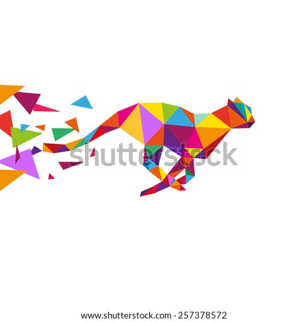cheetah abstract isolated on a