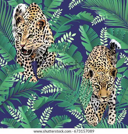 cheetah and leopards palm