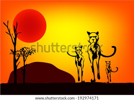 cheetah at sunset vector