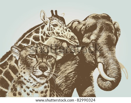 cheetah giraffe elephant vector