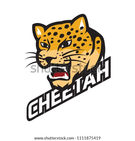 cheetah logo, vector illustration