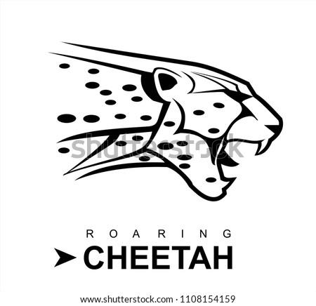 cheetah, roaring cheetah in black and white.