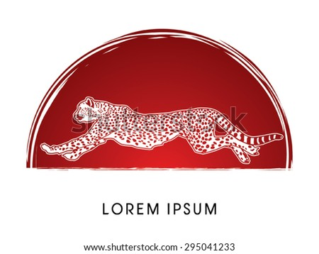 cheetah running  side view  on