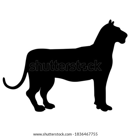 cheetah vector icon. cheetah  silhouette symbol. Linear style sign for mobile concept and web design. House animals symbol logo illustration. vector