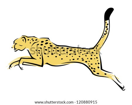 Cheetah - vector illustration
